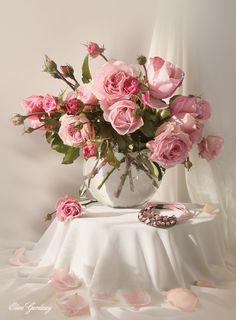 roses, flowers, Elen Gardzey, розы, цветы, натюрморт, нежность