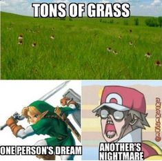 My face should be under the nightmare, I hate mowing the lawn Legend of Zelda, Pokemon, Video Game Meme