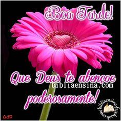 Boa Tarde! Que Deus te abençoe poderosamente! #Deus_Abencoe_Voce #Abencoe #Deus