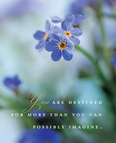 """You are destined for more than you can possibly imagine"" ~ Dieter F. Uchtdorf <3"
