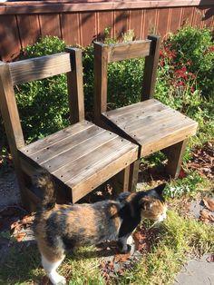 mini chair(미니의자) Mini Chair, Custom Furniture, Dining Chairs, Home Decor, Bespoke Furniture, Decoration Home, Room Decor, Dining Chair, Interior Design