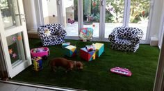 The complete installation of a playroom. Easigrass is just as friendly to our beloved pets.
