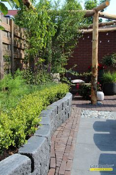 Outdoor Shelters, Backyard, Patio, Summer Months, Garden Design, Flora, Eco Friendly, Sidewalk, Planters