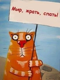 """Traduzindo:""""Tô em greve de fome!"""". Por quê?! Porquê quero emagrecer! rsrs Dani Cabo"""