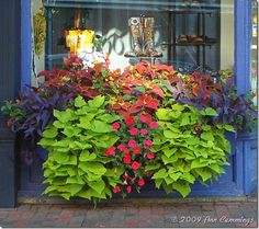 Downtown Portsmouth NH Storefront | New Hampshire Coastal Living - Photos of NH and Maine Life