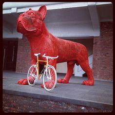 Have you met the Eddy Marckx fixie yet? >> OMG Giant #dog (#eddymerckx #fixie) [ thanks to @sandervdm ]