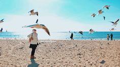 Haeundae beach Busan #busan #southkorea #haeundaebeach #asiatrip #beach