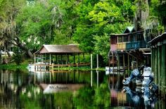 10 inexpensive and unique places to stay in Florida. I like them all. From camping, to fish camps to vintage motels.