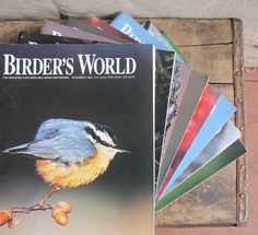 instant collection of vintage 1990s Birder's World magazines by MouseTrapVintage, $24.00