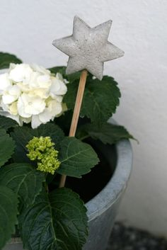 diy concrete star stick decor hydrangea planter
