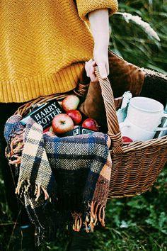 Осенний пикник  осенью 🍵🍡🌳