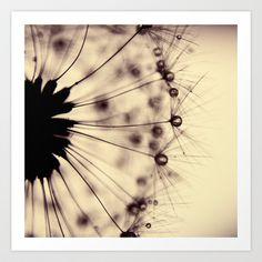 dandelion - droplets of mocha Art Print by ingz - $18.00