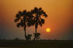 Ovamboland Geography, Africa, War, Iron Fist, Celestial, Sunset, Soldiers, Nature, Boards
