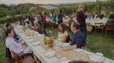 bellair farm charlottesville hill and holler -
