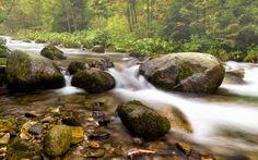 Potok Olczyski - null