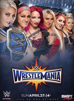 missing nikki b and the rest - wwe & wwf News Wrestling Posters, Wrestling Divas, Women's Wrestling, Wwe Events, Miss Nikki, Gorgeous Ladies Of Wrestling, Wwe Ppv, Catch, Wwe Female Wrestlers