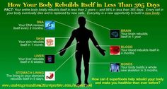 Best superfood supplement rebuild you in Less than 365 Days. Rebuild your body and dramatically improve your health with mega nutrition organic superfood. Health And Nutrition, Health And Wellness, Health Tips, Health Fitness, Health Blogs, Health Goals, Health Motivation, Wellness Tips, Health Benefits