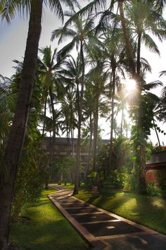 garden casco Aerowisata Sanur Beach Hotel Bali