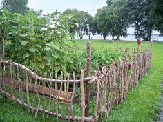 Diy Garden Fence, Backyard Fences, Garden Gates, Garden Landscaping, Cheap Garden Fencing, Garden Beds, Bamboo Garden Ideas, Farm Fencing, Rustic Gardens