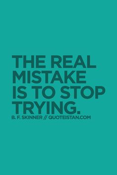 The real mistake is to stop trying.