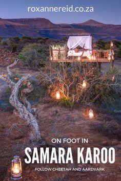 Samara Private Game Reserve, Graaff-Reinet, #Karoo #safari #travel #EasternCape #SouthAfrica