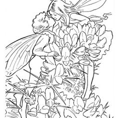 267 Best Adult Coloring Pages Images Adult Coloring Pages