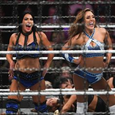 Photos Six Teams Battle Inside Elimination Chamber For Wwe Women S Tag Team Titles Wwe Girls Wwe Female Wrestlers Wrestling Wwe