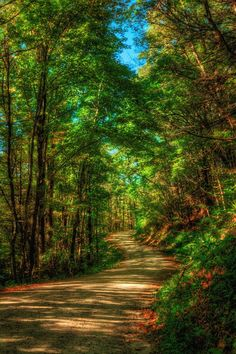 """ If there's a dirt road to Heaven, this is probably it.  Beautiful.""  ---Mark Huber"
