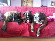 Tutti e tre sul divano