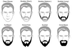 barba.jpg (662×443)