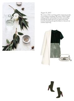 """Untitled #803"" by duoduo800800 ❤ liked on Polyvore featuring Alexander Wang, The Row, Steve Madden and Marni"