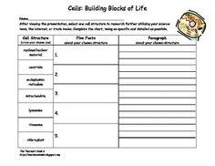 Cells Building Blocks Of Life Pg