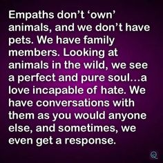 Empath and animals Empath Traits, Intuitive Empath, Empath Abilities, Psychic Abilities, Highly Sensitive Person, Sensitive People, Infj Personality, Introvert, Infp