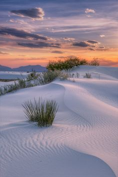 beautiful landscapes White Sands National Monument in Alamogordo, New Mexico and 50 Secret Places in America That Most Tourists Dont Know About Alamogordo New Mexico, White Sands New Mexico, White Sands National Monument, Monument National, National Parks, Places In America, Land Of Enchantment, Secret Places, Landscape Photos