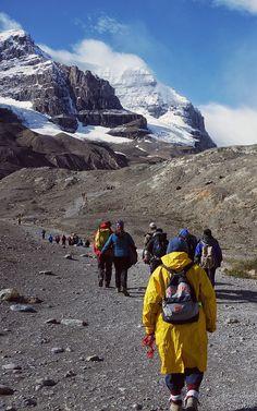 Trek America Canadian Roadtrip Athabasca Glacier Canada La Lingua Travel Blog Travel Blog, Mount Everest, Road Trip, Memories, Mountains, Nature, Memoirs, Souvenirs, Naturaleza