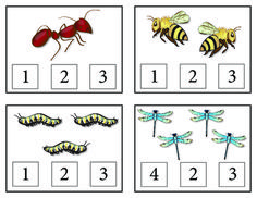 Bugs! Count and Clip Cards and Matching Cards includes insect clip cards for numerals 1-20 as well as 10 insect matching cards and an insect matching worksheet with separate insect names to glue.