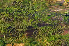 National Geographic Photo Contest 2013, Part II - In Focus - The Atlantic