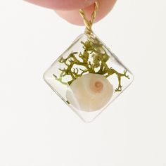 My own work. Resin pendant with sea shell and green moss.