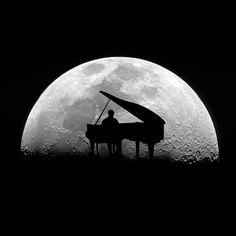 Blue Moon enjoys Mozart.