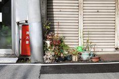 photo IMG_1867_zpsbff9b541.jpg