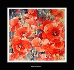 susan+crouch+watercolors | Selección de acuarelas de flores - Flowers - watercolors