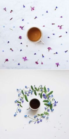 exPress-o: Blooming Tea