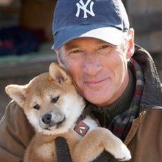 O amor, dedicação e carinho dos animais de estimação