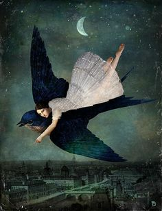 Fly me to Paris by Christian Schloe