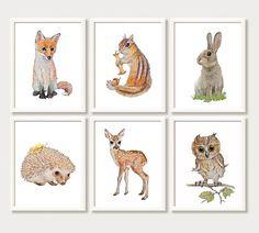 Unieke Woodland dier afdrukken instellen, set van 6 prenten, gemaakt op basis van mijn originele aquarel schilderijen: • Fox • Bunny • Herten • Chipmunk • Hedgehog • Uil Als u wenst te vervangen om het even welk van hen met een andere print die wij bieden, gebruik dan de volgorde notities te laten weten (zie ons GEHELE ASSORTIMENT: https://www.etsy.com/shop/AnimArtPrint). Deze prachtige decor-set is een perfecte aanvulling op een kinderdagverblijf of spelen kamer, een pra...