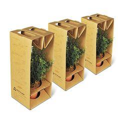 Red Dot Design, Box Design, Diwali Gift Hampers, Plant Box, Tree Shop, Flower Packaging, Cardboard Packaging, Plant Nursery, Comme Des Garcons
