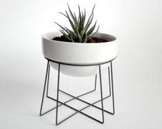 plante géométrique se tiennent « toile d