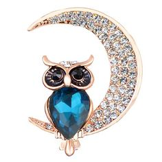 Owl Brooch/Pin- I love this cute owl sitting on the crescent moon.