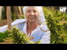 These California Nuns Are Fighting For Their Right To Grow/Sell Cannabis