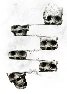 Our artists: Ali Gulec - Distorted skulls - www.customly.com